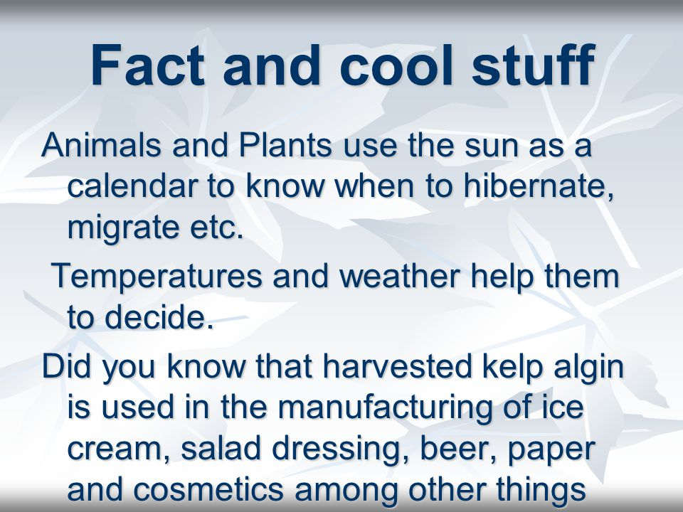 Fact and cool stuff Animals and Plants use the sun as a calendar to know when to hibernate, migrate etc.