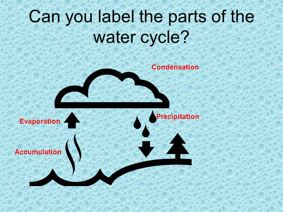 Can you label the parts of the water cycle