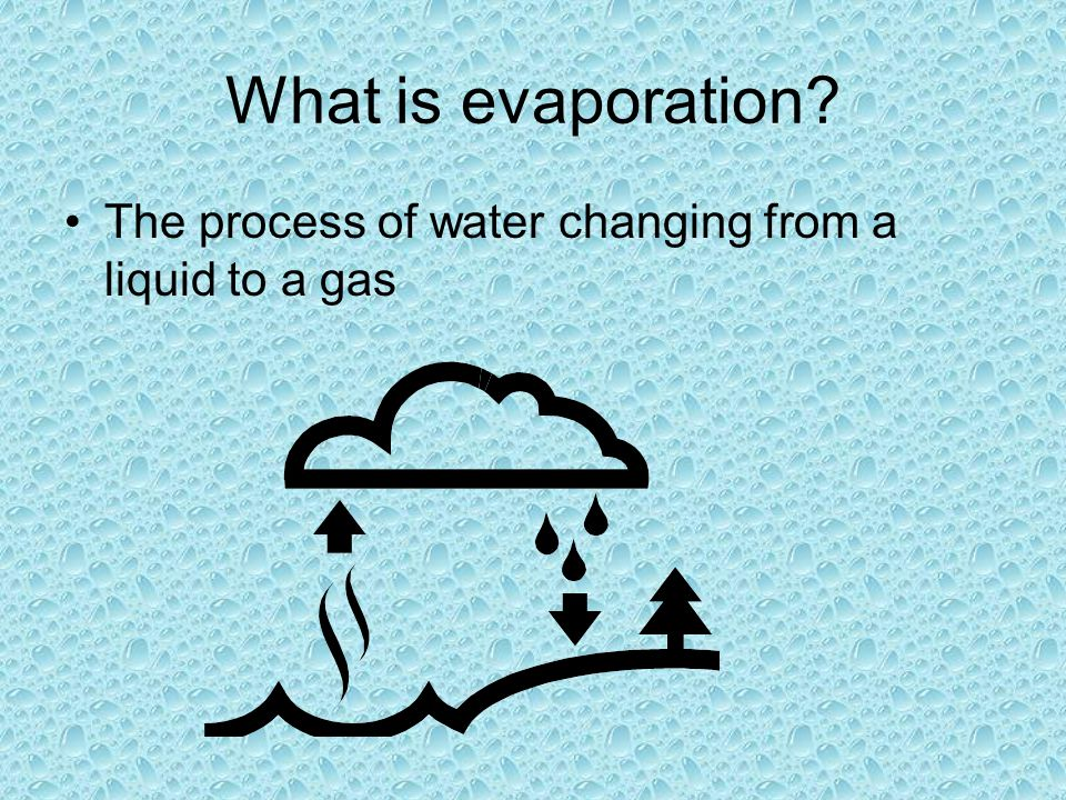 What is evaporation The process of water changing from a liquid to a gas