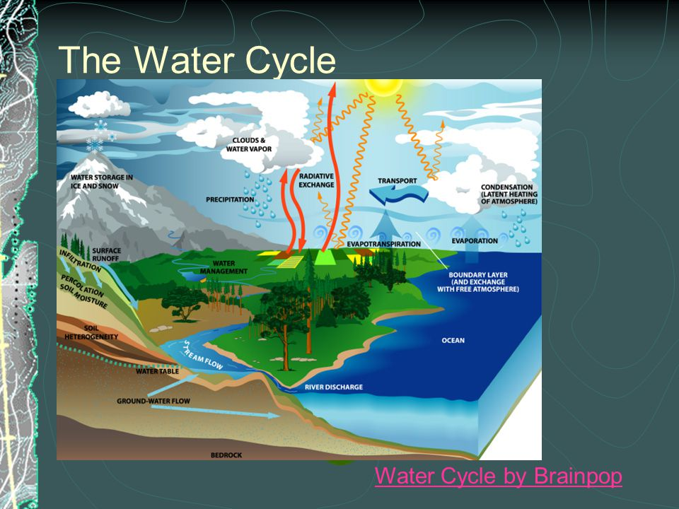 The Water Cycle Water Cycle by Brainpop
