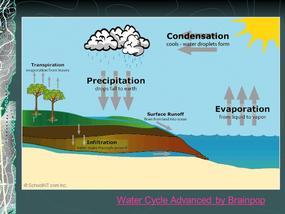 Water Cycle Advanced by Brainpop