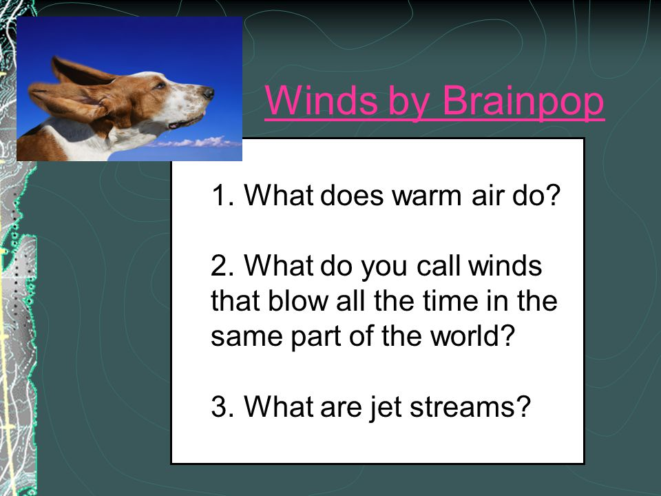 Winds by Brainpop . What does warm air do