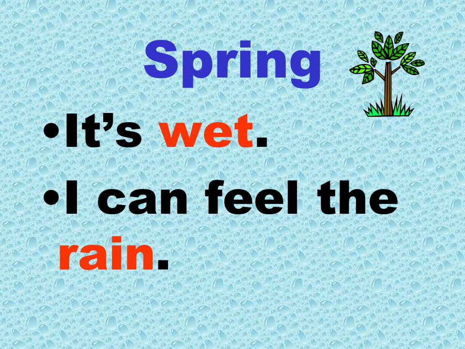Spring It's wet. I can feel the rain.