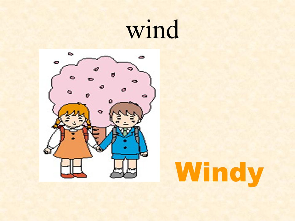 wind Windy