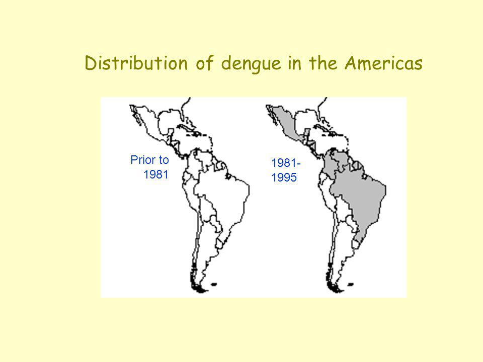 Distribution of dengue in the Americas