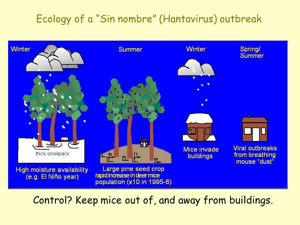 Ecology of a Sin nombre (Hantavirus) outbreak