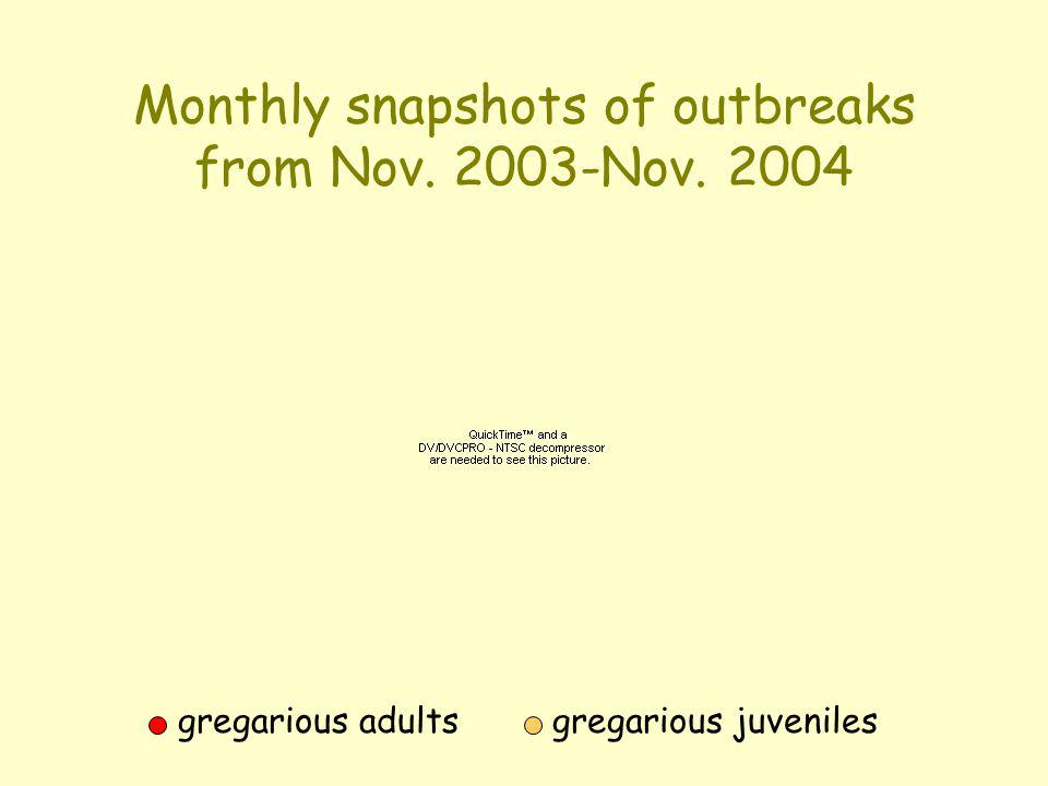 Monthly snapshots of outbreaks from Nov. 2003-Nov. 2004