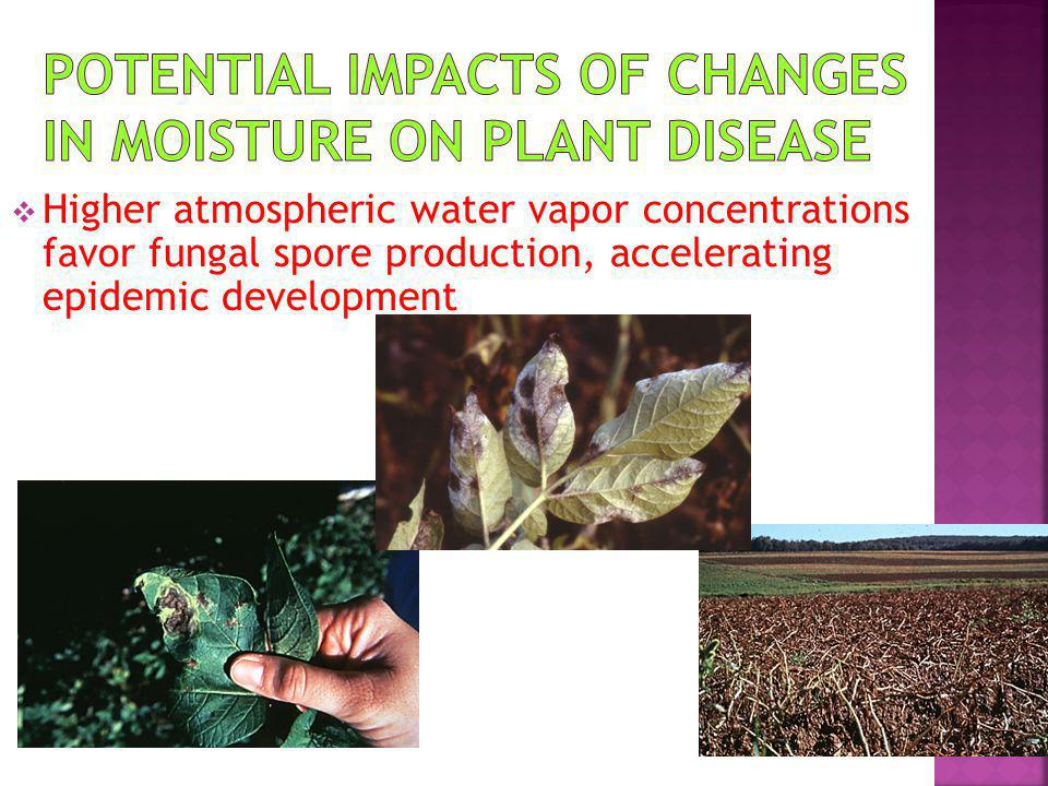Potential impacts of changes in moisture on plant disease