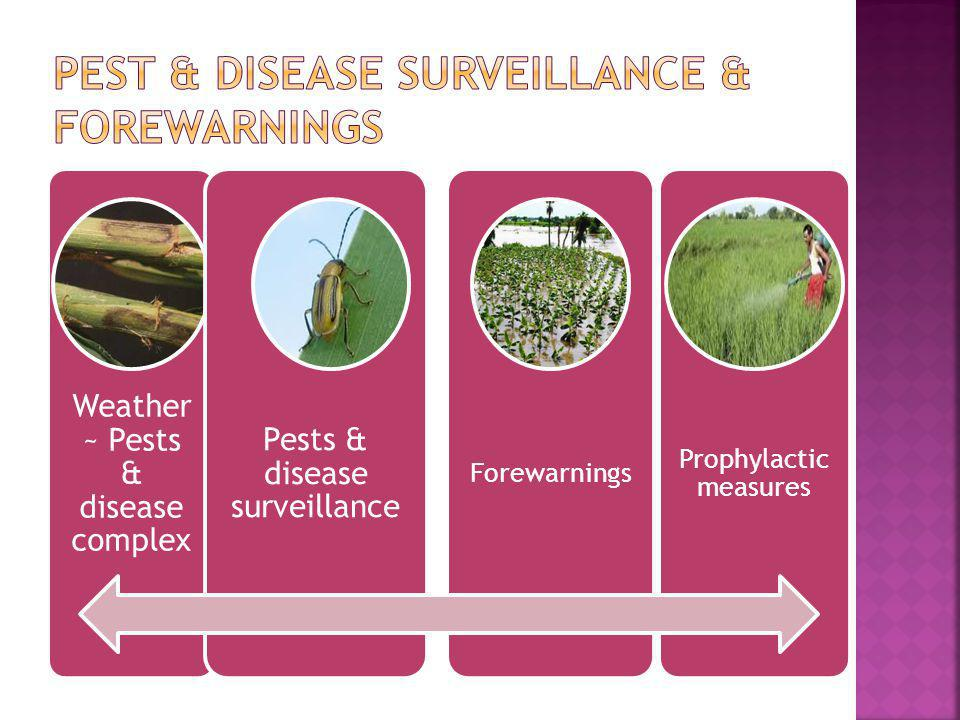 Pest & disease Surveillance & forewarnings