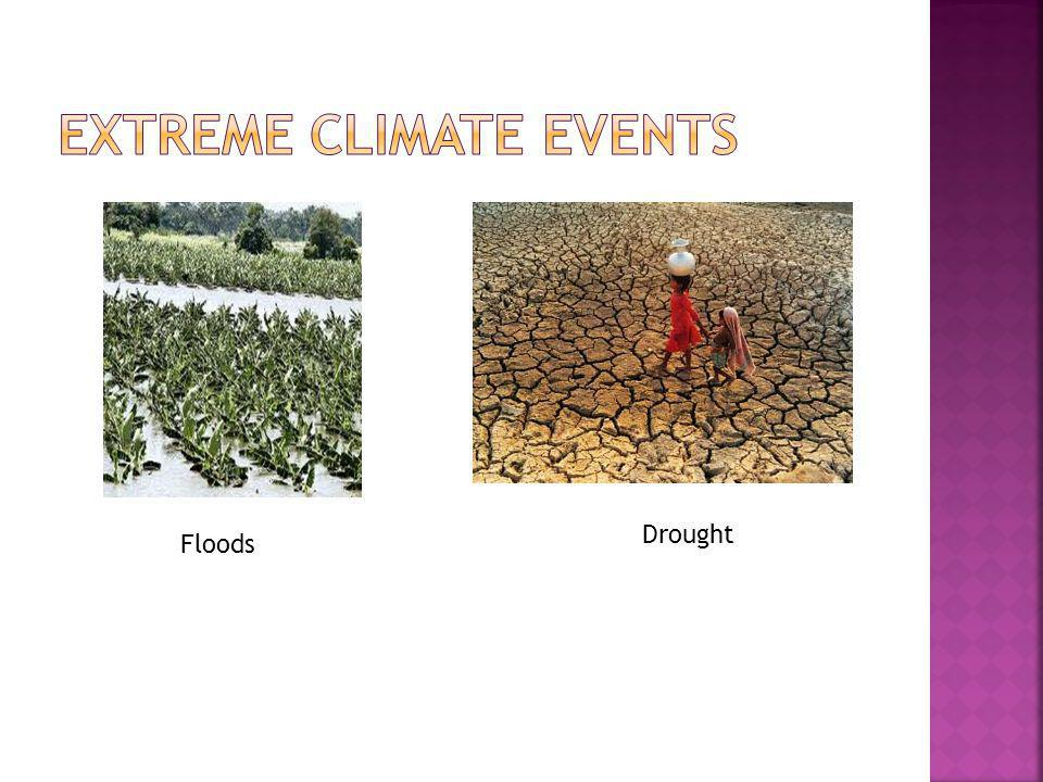 Extreme climate events