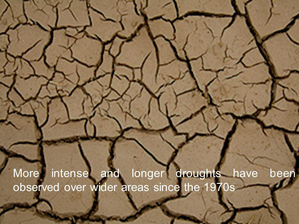 More intense and longer droughts have been observed over wider areas since the 1970s