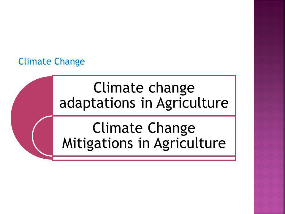 Climate change adaptations in Agriculture