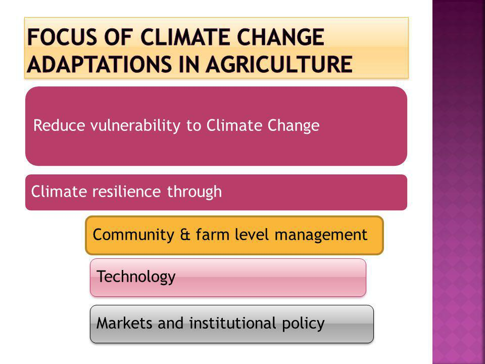 Focus of Climate Change adaptations in Agriculture