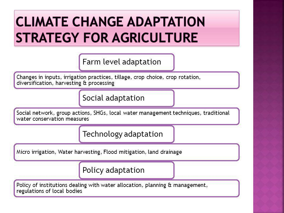 Climate Change adaptation strategy for agriculture