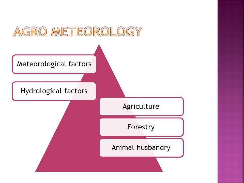 Meteorological factors