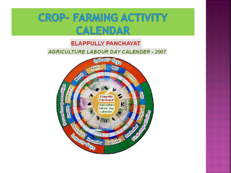 Crop- farming activity calendar