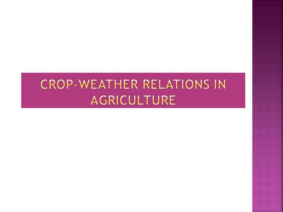 Crop-weather relations in agriculture