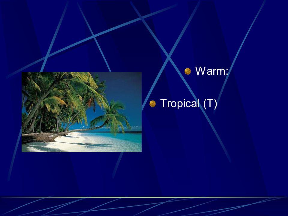 Warm: Tropical (T)