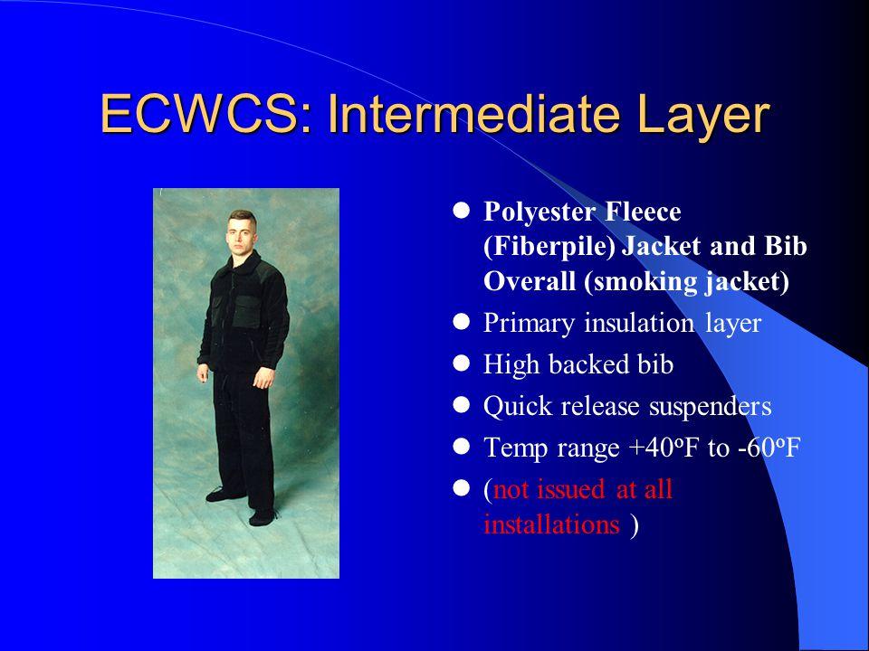 ECWCS: Intermediate Layer