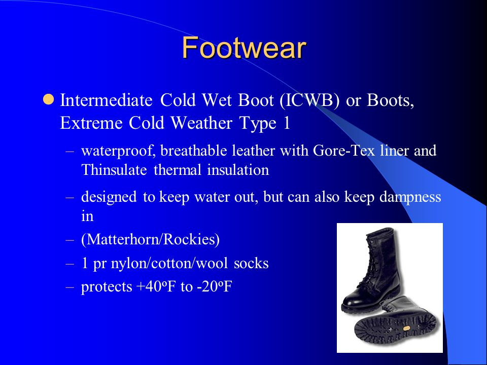 Footwear Intermediate Cold Wet Boot (ICWB) or Boots, Extreme Cold Weather Type 1.