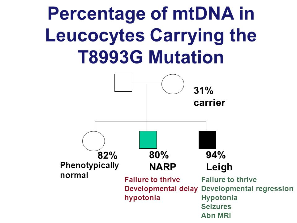 Percentage of mtDNA in Leucocytes Carrying the T8993G Mutation