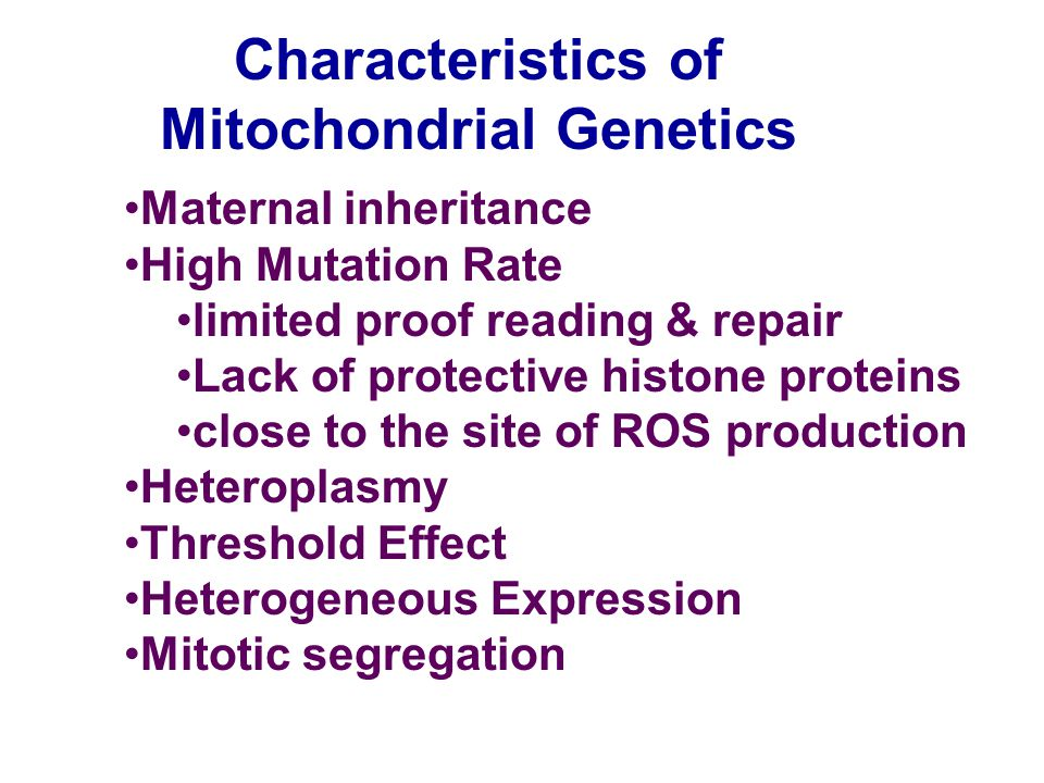 Mitochondrial Genetics