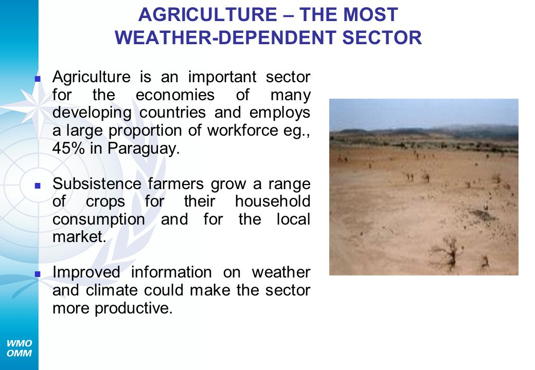 AGRICULTURE – THE MOST WEATHER-DEPENDENT SECTOR