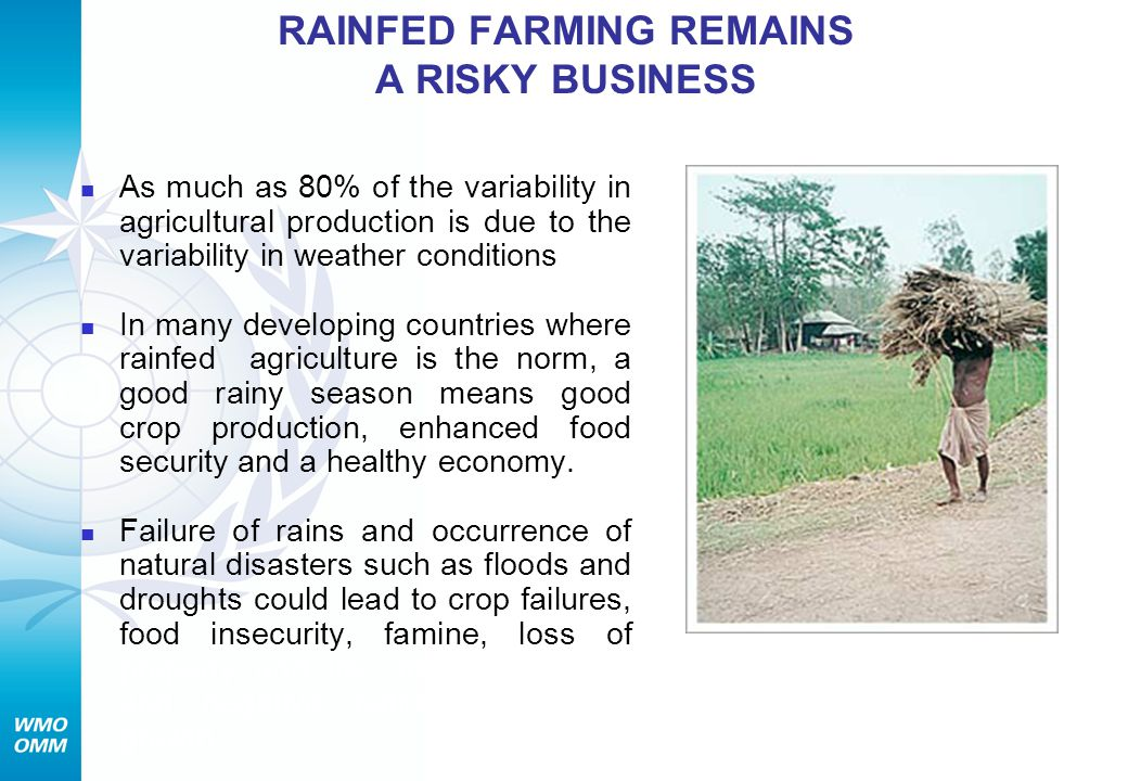 RAINFED FARMING REMAINS A RISKY BUSINESS