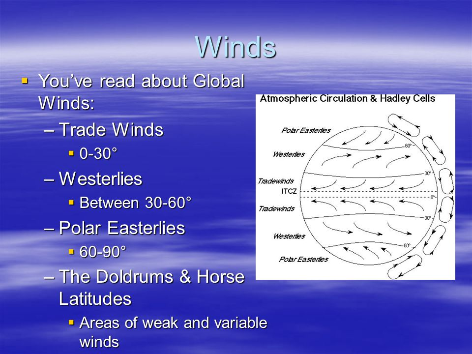 Winds You've read about Global Winds: Trade Winds Westerlies