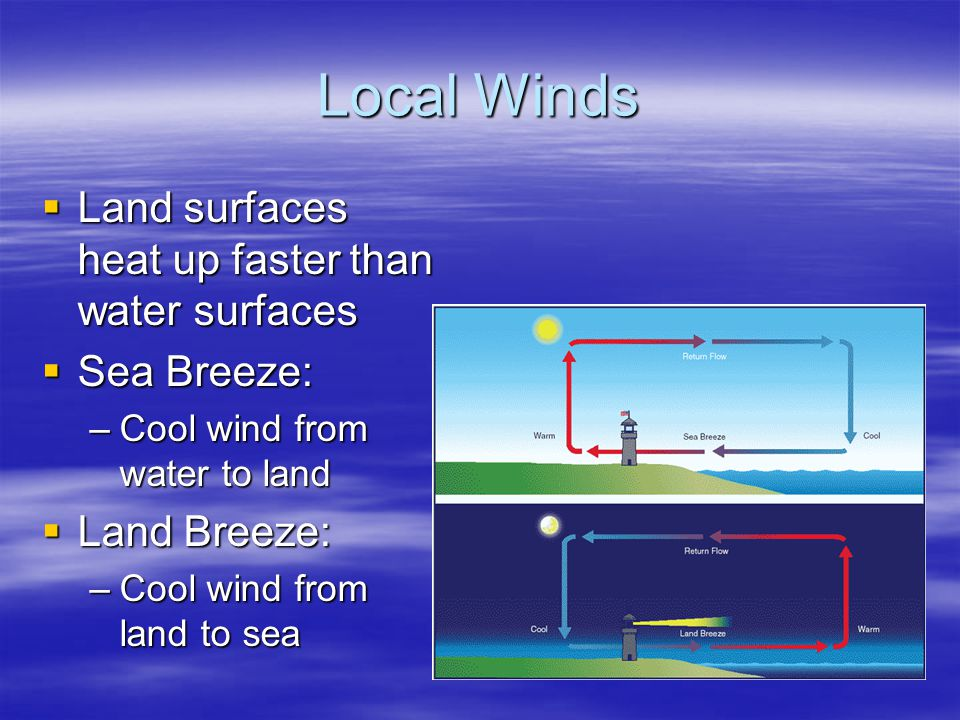 Local Winds Land surfaces heat up faster than water surfaces