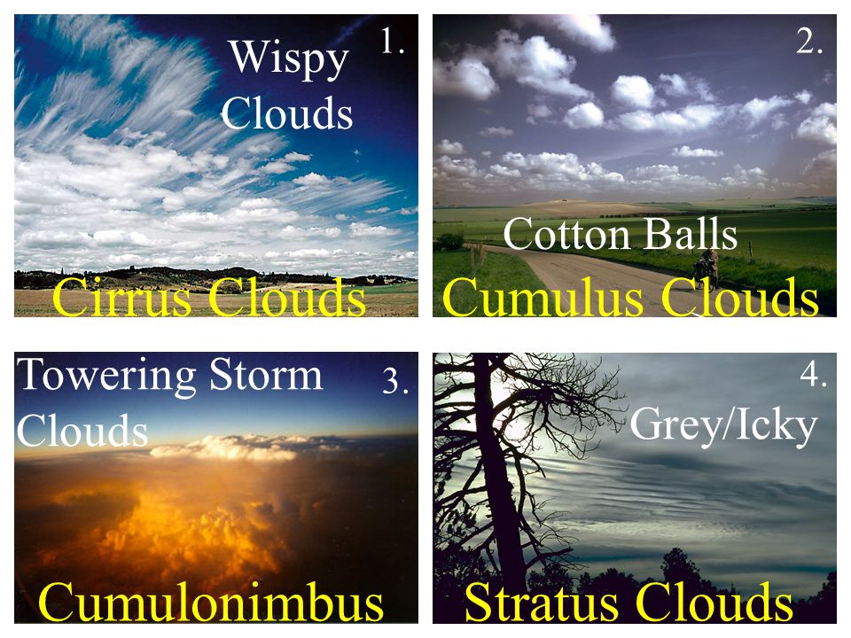 Cirrus Clouds Cumulus Clouds Cumulonimbus Stratus Clouds Wispy Clouds