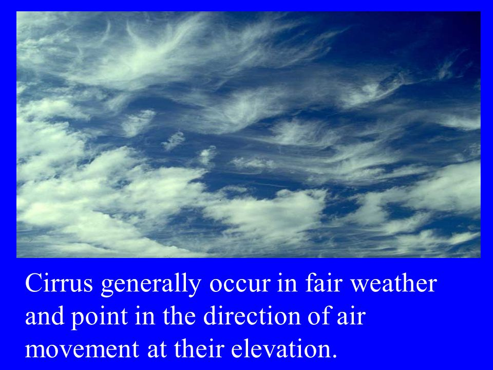 Cirrus generally occur in fair weather and point in the direction of air movement at their elevation.