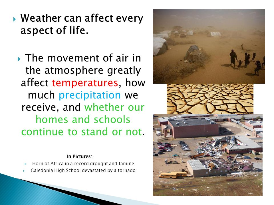 Weather can affect every aspect of life.