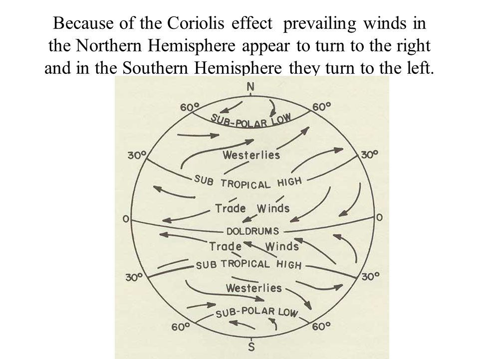 Because of the Coriolis effect prevailing winds in the Northern Hemisphere appear to turn to the right and in the Southern Hemisphere they turn to the left.