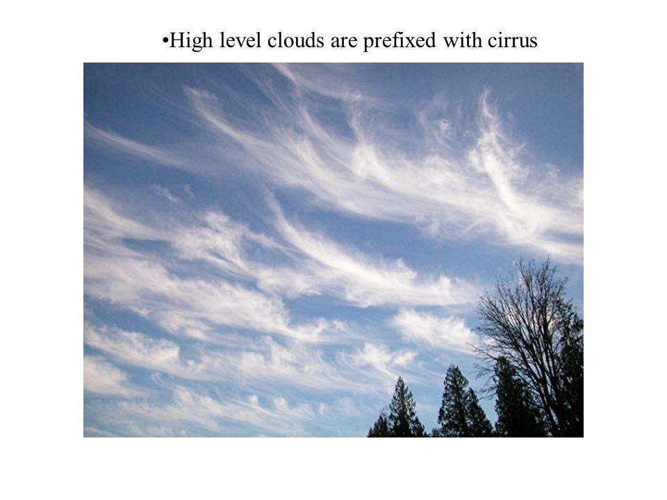 High level clouds are prefixed with cirrus