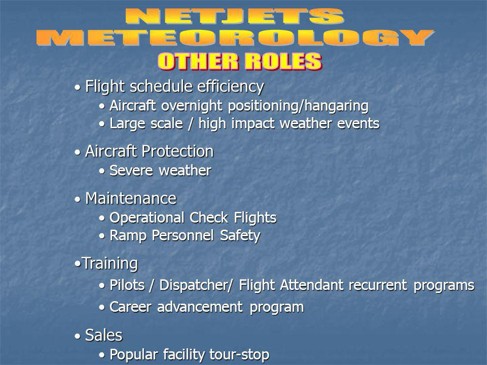 NETJETS METEOROLOGY OTHER ROLES Training Flight schedule efficiency