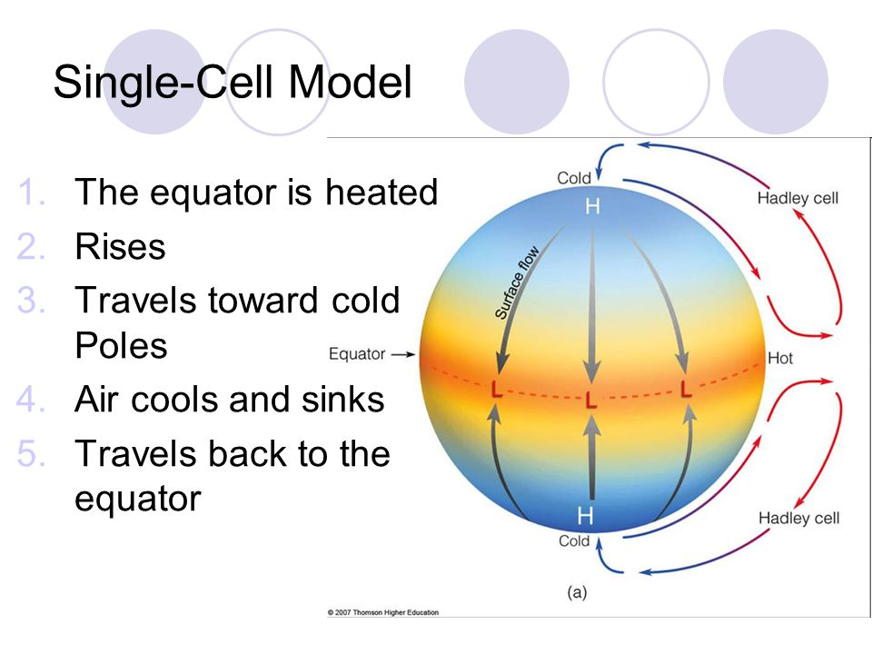 Single-Cell Model The equator is heated Rises