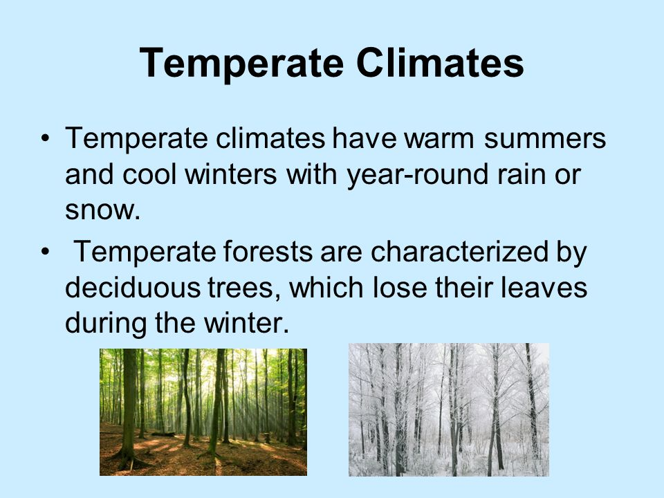 Temperate Climates Temperate climates have warm summers and cool winters with year-round rain or snow.