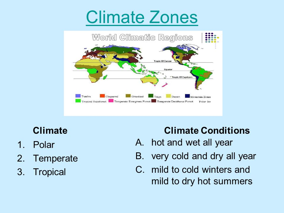 Climate Zones Climate Conditions Climate hot and wet all year Polar