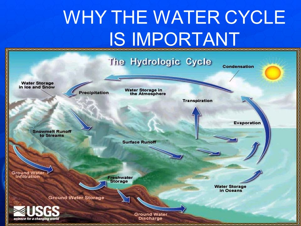 WHY THE WATER CYCLE IS IMPORTANT