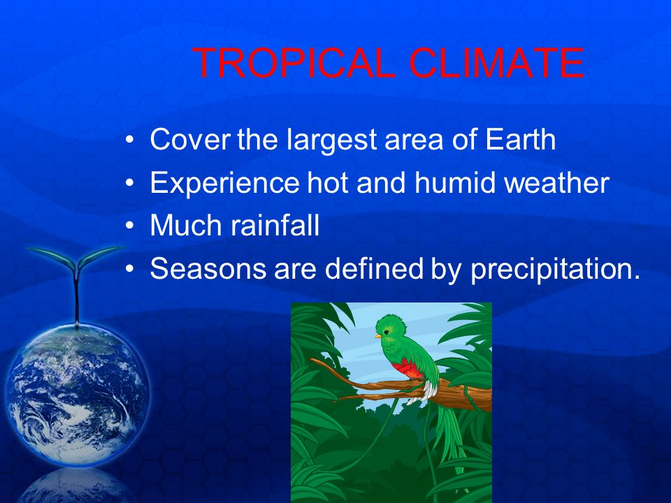 TROPICAL CLIMATE Cover the largest area of Earth