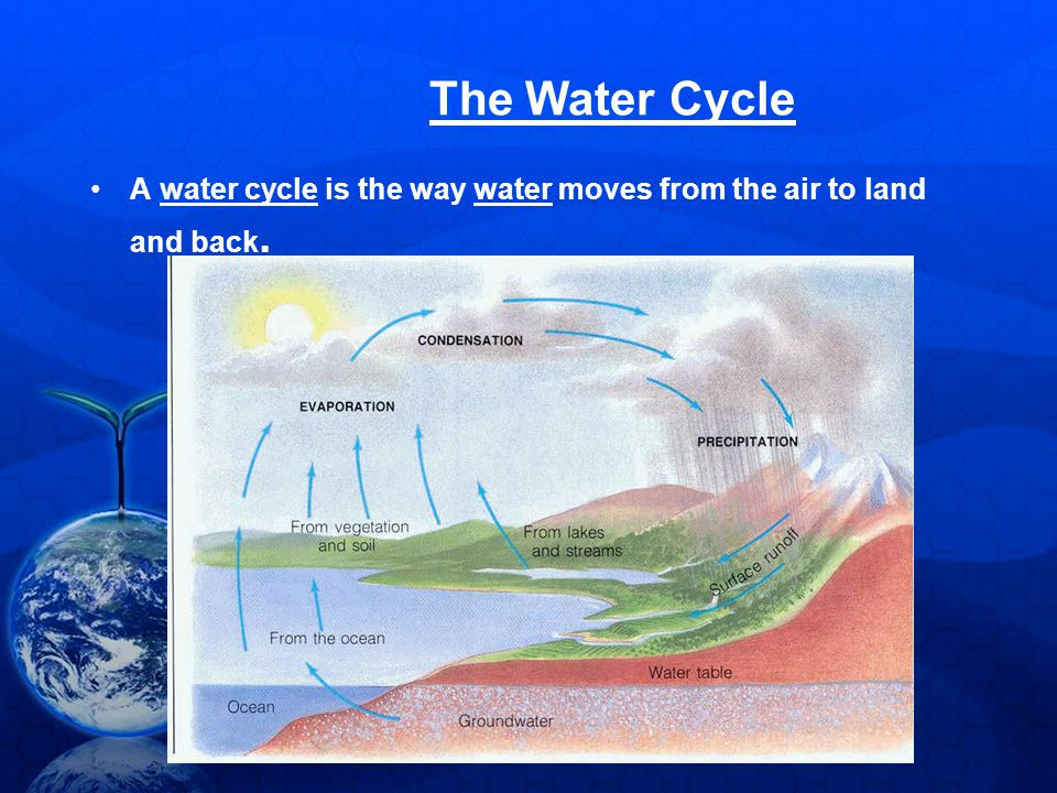 The Water Cycle A water cycle is the way water moves from the air to land and back.