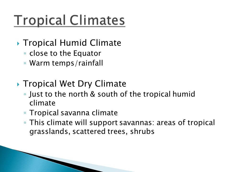 Tropical Climates Tropical Humid Climate Tropical Wet Dry Climate