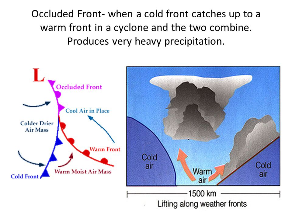 Occluded Front- when a cold front catches up to a warm front in a cyclone and the two combine.