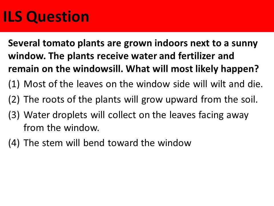 ILS Question