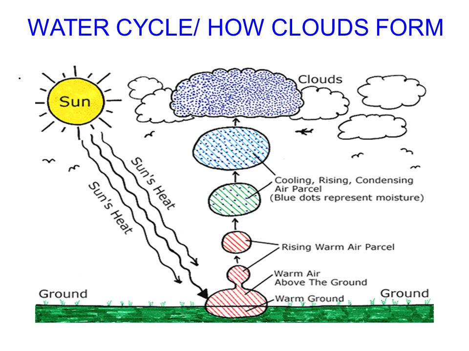 WATER CYCLE/ HOW CLOUDS FORM