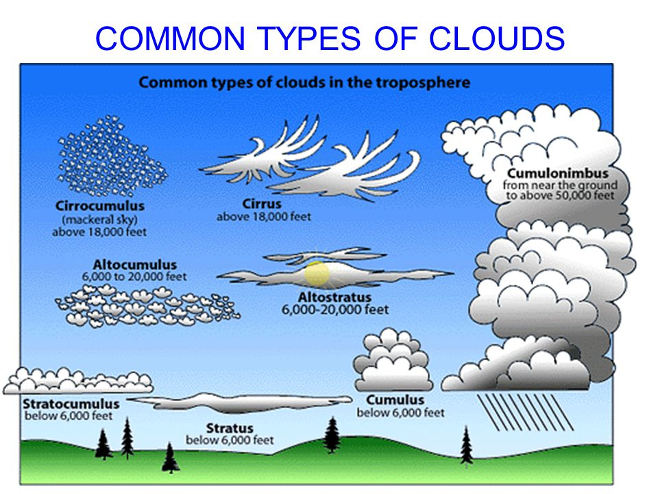 COMMON TYPES OF CLOUDS .