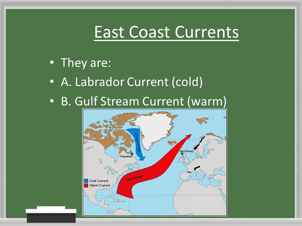 East Coast Currents They are: A. Labrador Current (cold)
