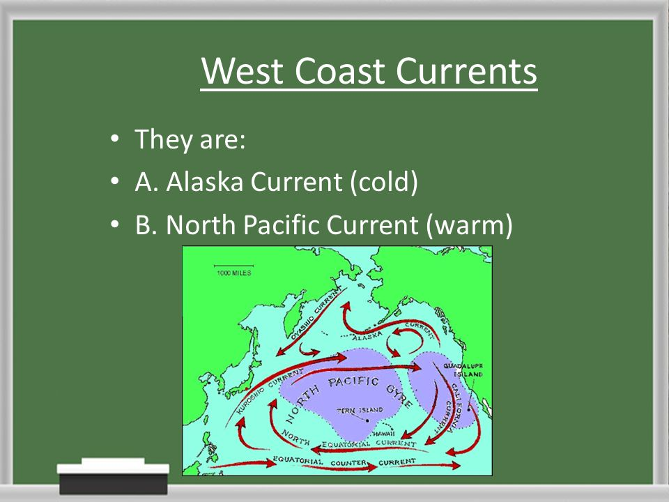 West Coast Currents They are: A. Alaska Current (cold)