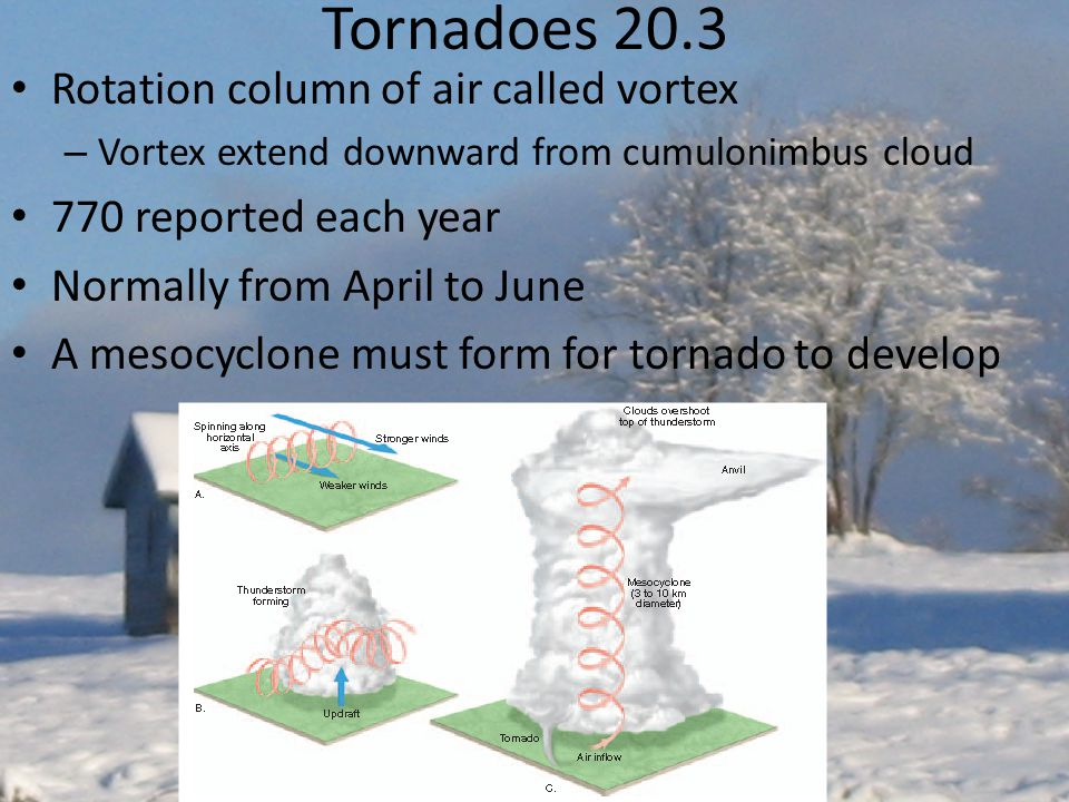 Tornadoes 20.3 Rotation column of air called vortex